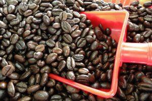 Свежий кофе Копи Лювак во Вьетнам