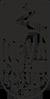 neva coffee roasters лого